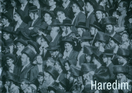 Obálka knihy Haredim